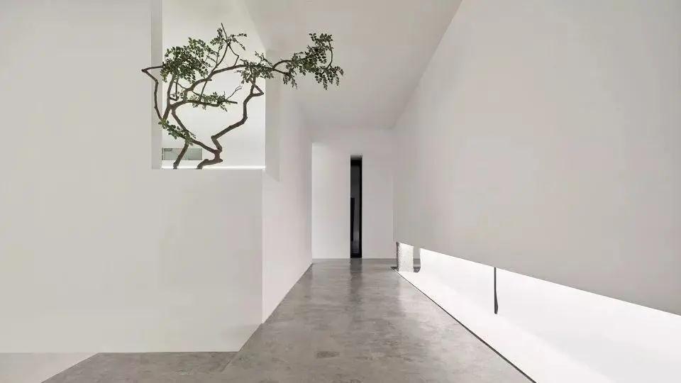 顶级极简主义办公空间设计,纯净的极致之美 !